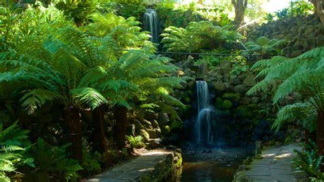 botanic gardens melbourne royal botanic gardens melbourne expedia co in
