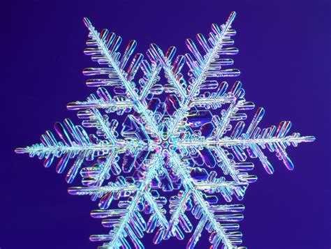 google images of snowflakes snowflake and snow crystal photographs