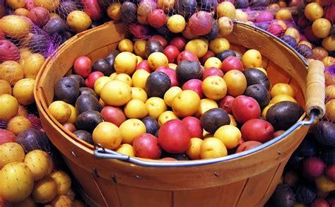 alimenti consigliati per emorroidi emorroidi cibi da evitare e dieta diety3