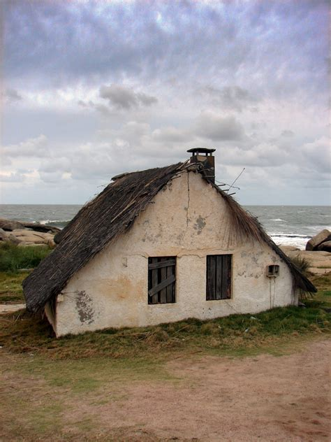 house in tiny house in a landscape