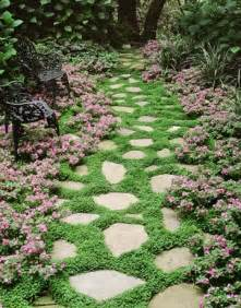 landscaping ground cover ideas ground cover plants for walkways