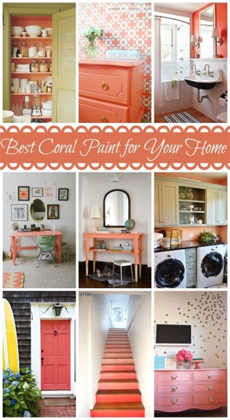 best coral paint colors color chart coral images