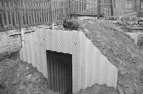 backyard bomb shelter how families lived in their wwii backyard bomb bunkers