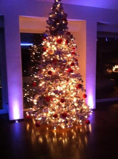 albero di natale in casa natale vip 2012 gossip fanpage