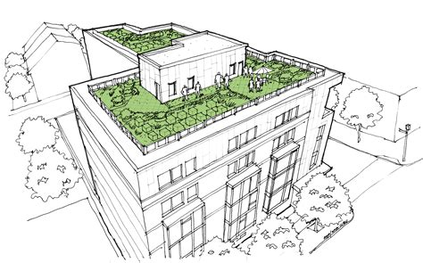 green roof design by spanish based firm on a architects green roof technology for energy and thermal benefits in
