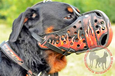 rottweiler muzzle leather rottweiler muzzle attack big breeds supplies