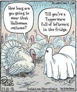 thanksgiving humor cartoons another thanksgiving funny funny stuff pinterest