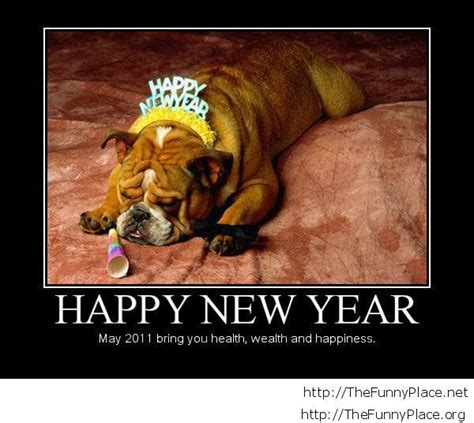 humorous new year images new year demotivational thefunnyplace