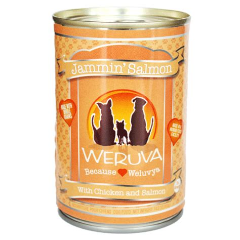 best canned puppy food lukes all