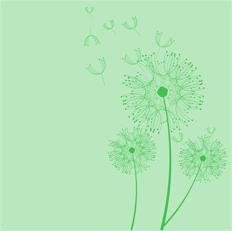 dandelion background dandelion flowers green background free stock photo