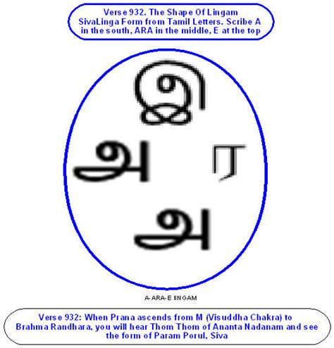 pattern making meaning in tamil thirumanthiram with meaning in tamil free neonconsult