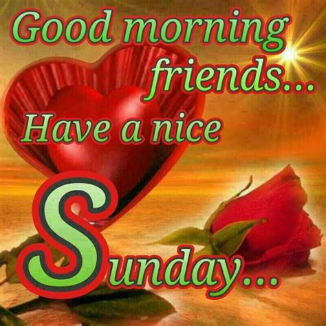 sunday images morning sunday friends pictures photos and images
