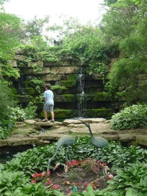 Dubuque Botanical Gardens Coy Pond Picture Of Dubuque Arboretum And Botanical Gardens Dubuque Tripadvisor