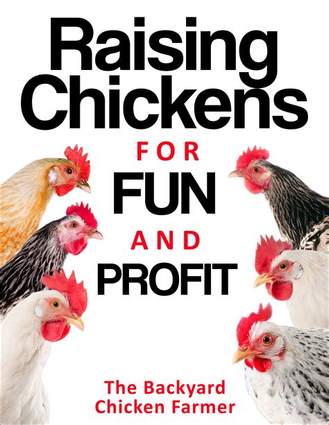 backyard chicken farmer raising chickens for and profit the backyard chicken