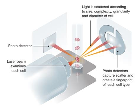 flow cytometry diagram lasercyte dx hematology analyzer veterinary diagnostics