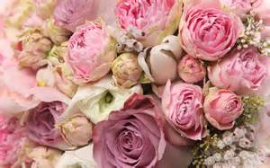 Types Of Garden Roses - top 11 flowers for a wedding in puglia impression villas amp weddings