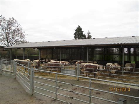 Beef Shed by The Feniton Court Estate News 2013
