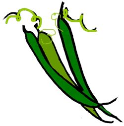 String Bean Clip - canned green beans clipart clipart suggest