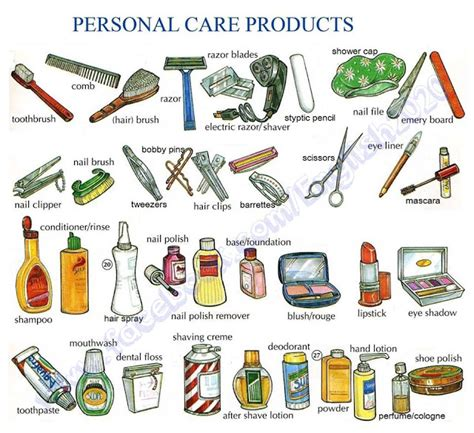 hair care vocabulary click on personal hygiene care