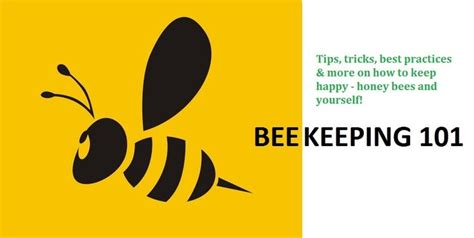 17 best images about save the bees on gardens