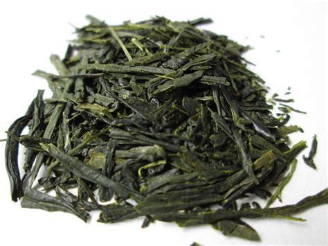 Brewing Green Tea Leaves - brewing gyokuro
