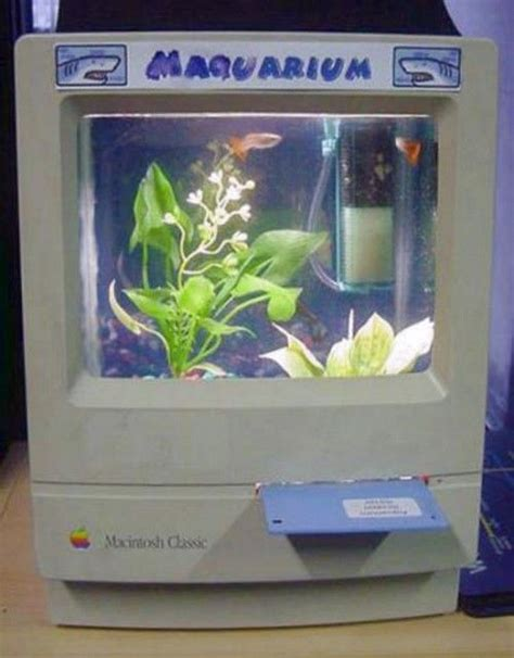aquarium design jobs 17 best images about cool fish tanks i want on pinterest