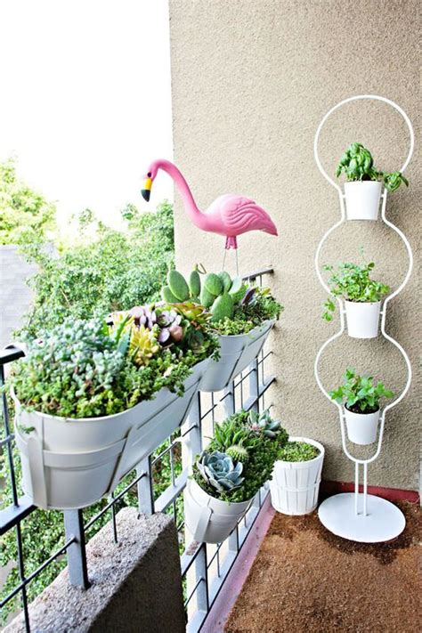 apartment plants ideas 25 best ideas about apartment balcony garden on pinterest