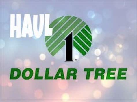 dollar tree haul makeup more