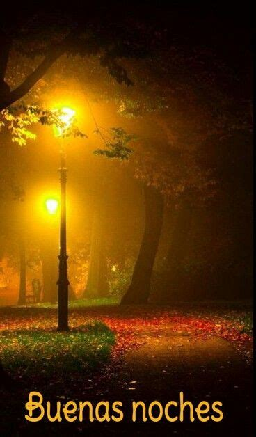 imagenes feliz noche guapo m 225 s de 25 ideas incre 237 bles sobre buenas noches guapo en