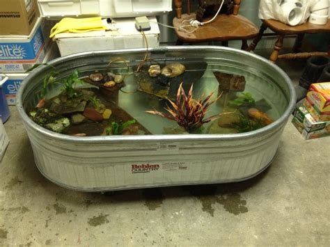 indoor fish pond indoor fish pond 7 home inspired pinterest