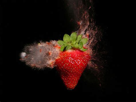 fast photography: 7 skilled high speed photographers