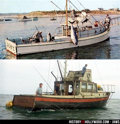 jaws back of boat is jaws a true story learn the real inspiration for jaws
