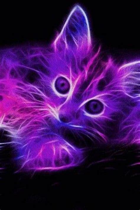 neon animals view bigger neon kitten  wallpaper