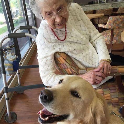 comfort dogs 5 remarkable ways dogs comfort us when we re sick barkpost