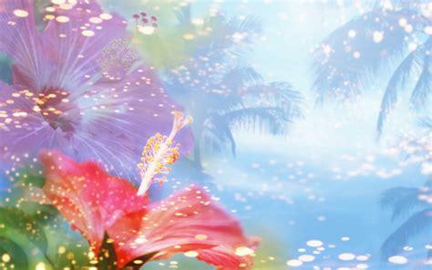 wallpaper sweet flower free hq sweet flower wallpaper free hq wallpapers