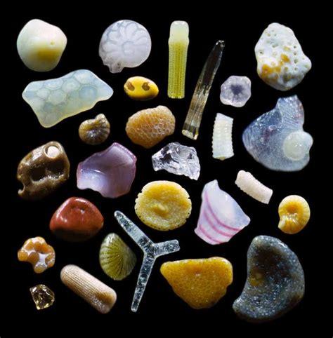 The Secrets Of Sand Tropical Sand Quarto Knows Blog