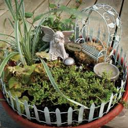 sles of dish gardens ideas photograph details abo - Container Garden Kit