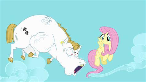 bulk pony how