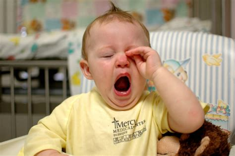 yawning images facts about yawning guaranteed to make you yawn