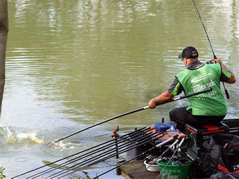 fishing match peg number 24 100 fishing match peg number 24 maver mega match