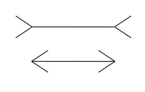 ilusiones opticas muller lyer tipos de ilusiones opticas semilleros de investigaci 243 n