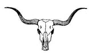 black and white longhorn outline clipart best