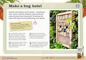 Build A Build A Bug Hotel Things To Do With Explore Dk