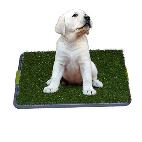 best indoor pet patio potty for dogs top 5 toilet