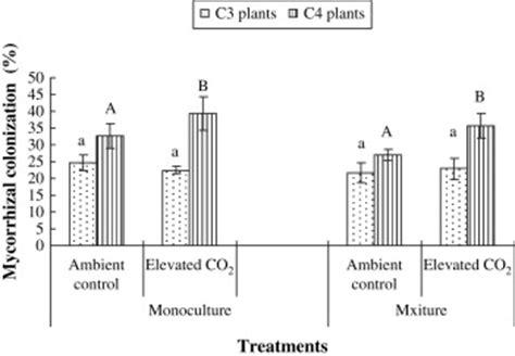 arbuscular mycorrhizal fungi increase organic carbon