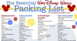 tips tricks and for your first walt disney world trip