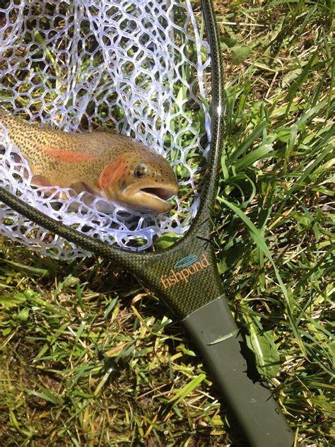 rugged creek fly rod review fly shop denver fishpond nomad guide net