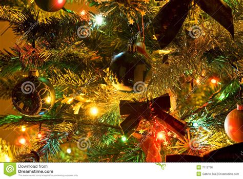 picture of tree with lights tree with lights stock photo image of