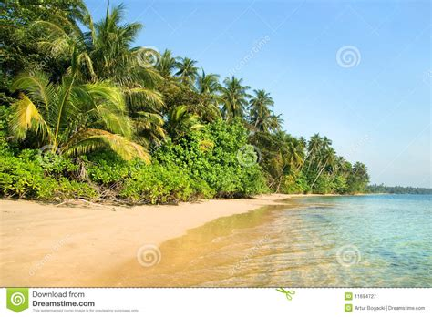 tropical island landscape royalty free stock photography