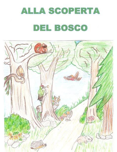 catena alimentare nel bosco parchi veneto elaborati delle scuole